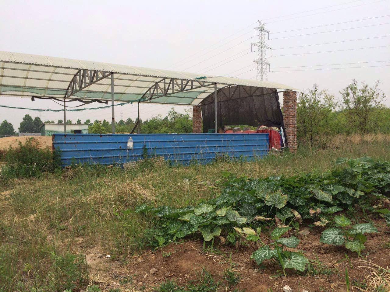 潍城区望留镇养殖土地出租