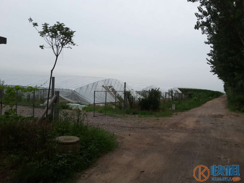 潍城区于河街道好位置农场转让