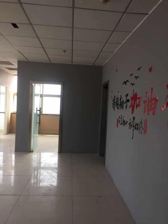 (快租無中介費)濰城勝利街青年路寫字樓出租