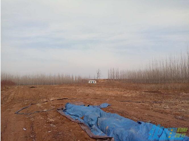 白浪河营丘大面积养殖土地转让